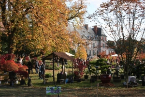 Autumn colour at the Chateau de Courson